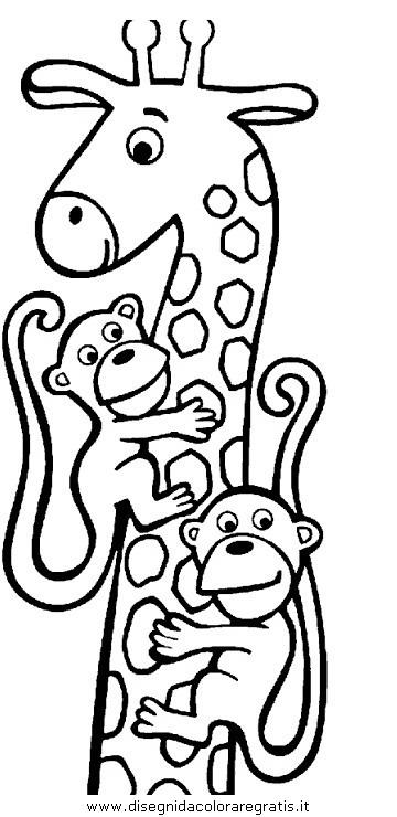 animali/giraffe/giraffa_30.JPG