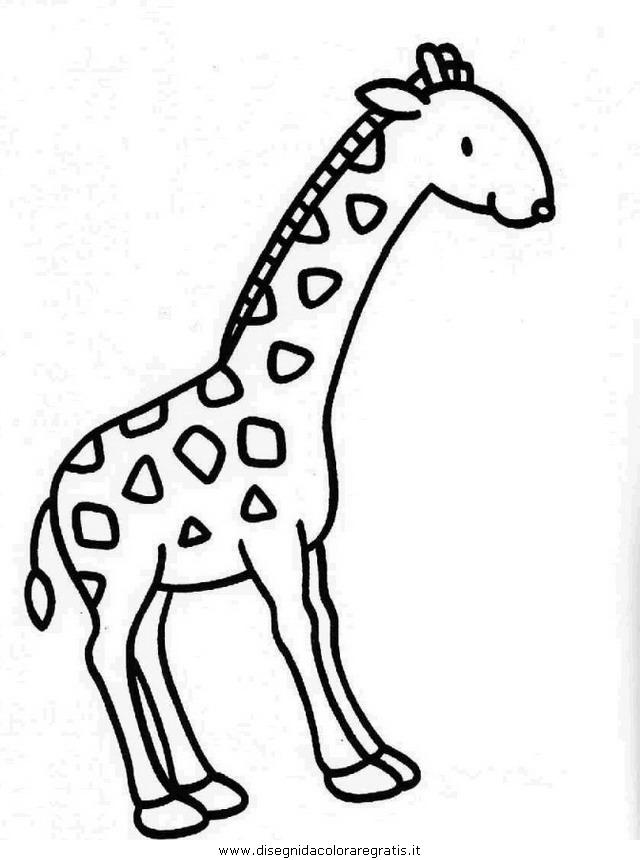 animali/giraffe/giraffa_31.JPG