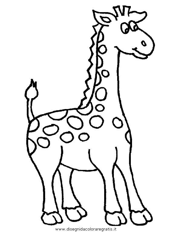 animali/giraffe/giraffa_42.JPG