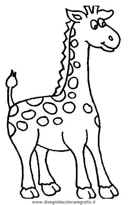 animali/giraffe/giraffa_44.JPG