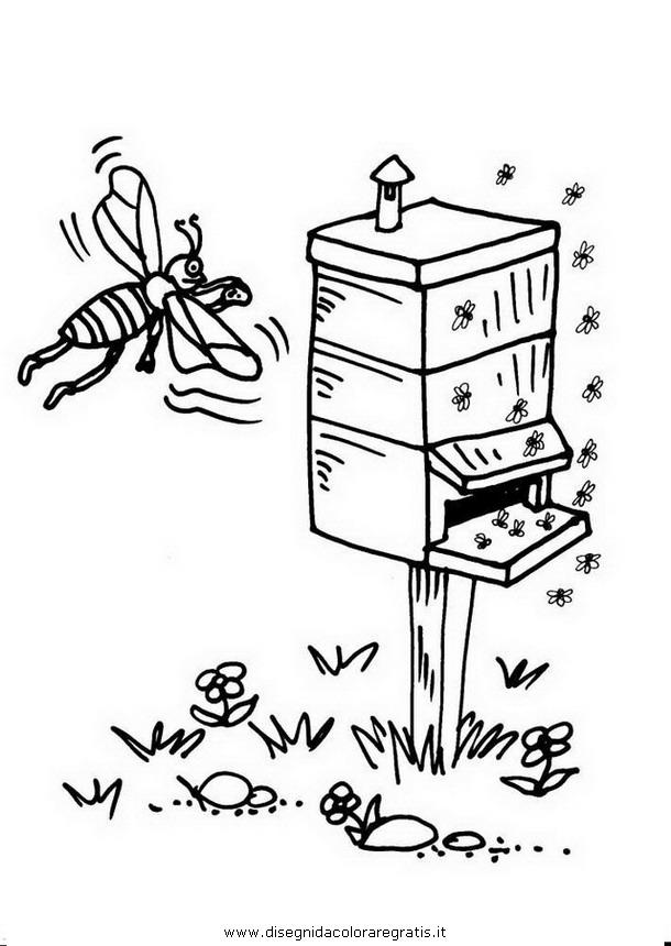 animali/insetti/alveare_apicoltore_03.JPG
