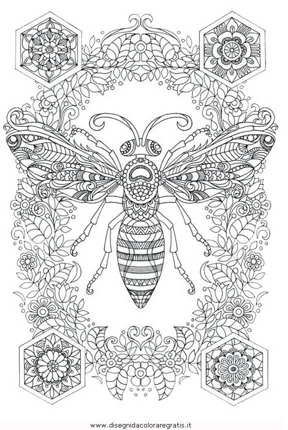 animali/insetti/ape_29.JPG