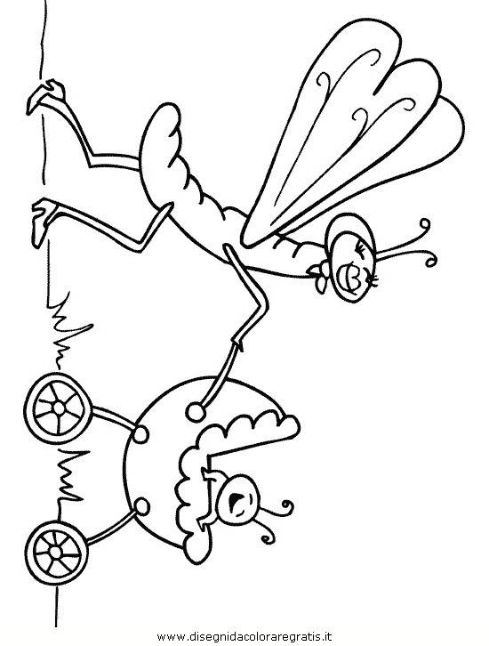 animali/insetti/insetto_105.JPG
