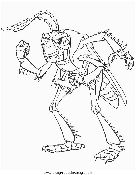 animali/insetti/insetto_76.JPG