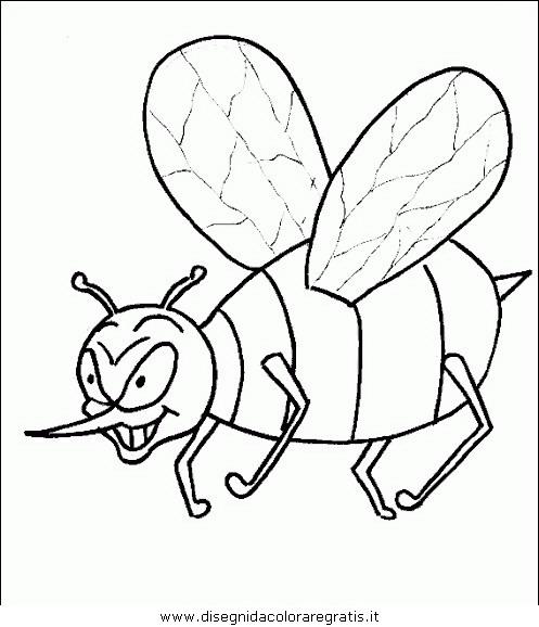 animali/insetti/insetto_97.JPG