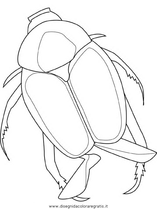animali/insetti/japanese-beetle.JPG