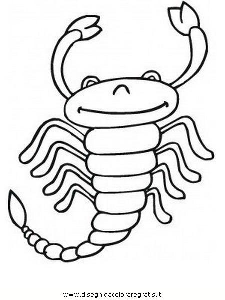 animali/insetti/scorpione_02.JPG