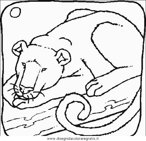animali/leoni/leone_02.JPG