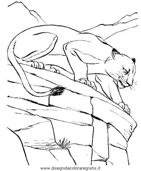 animali/leoni/leone_18.JPG