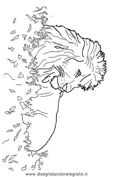 Disegno Leone 19 Animali Da Colorare