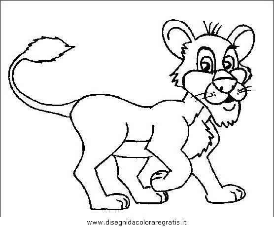 animali/leoni/leone_34.JPG