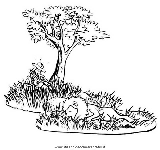 Disegno Safari Savana Animali Da Colorare