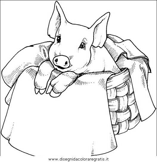 Disegno maiale 38 animali da colorare for Immagini teschi disegnati