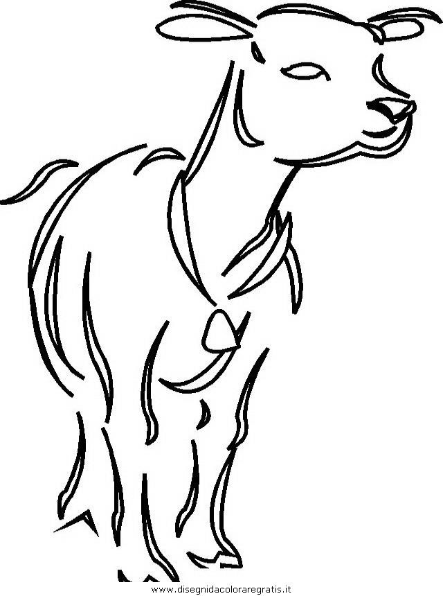 animali/mucche/mucca_toro_36.JPG