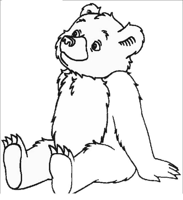 animali/orsi/orso_016.JPG