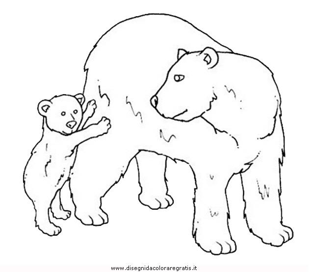animali/orsi/orso_076.JPG