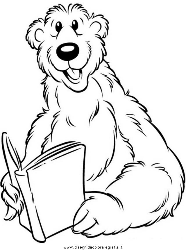 animali/orsi/orso_080.JPG