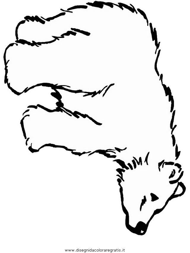 animali/orsi/orso_094.JPG