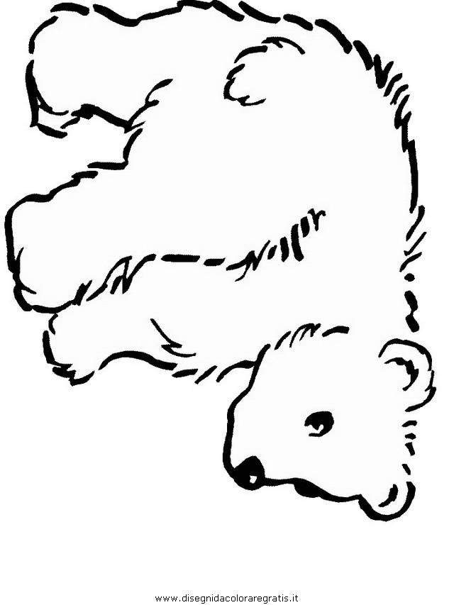 animali/orsi/orso_095.JPG