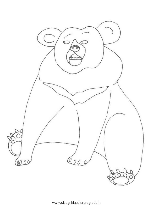 animali/orsi/orso_100.JPG