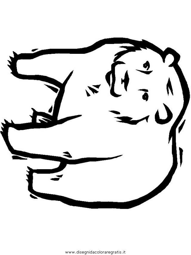 animali/orsi/orso_109.JPG