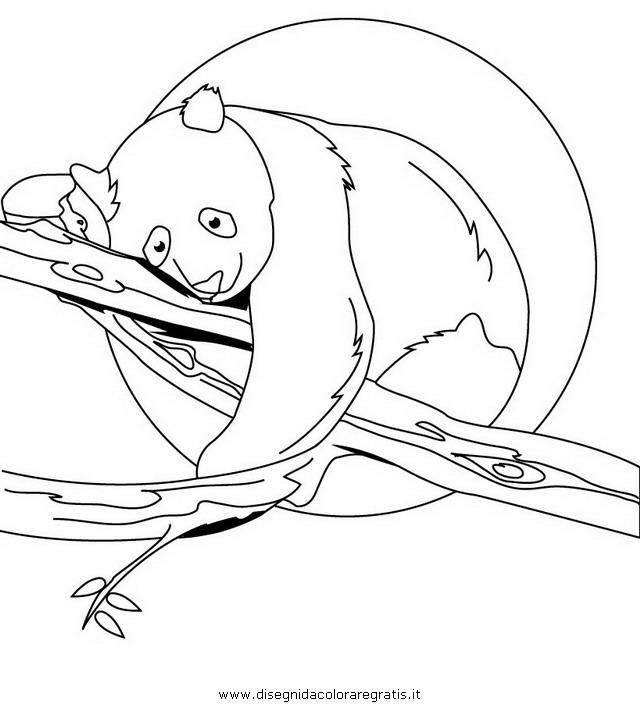 animali/orsi/panda_32.JPG