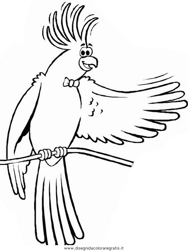 animali/pappagalli/pappagallo00.JPG
