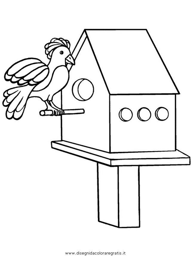 animali/pappagalli/pappagallo02.JPG