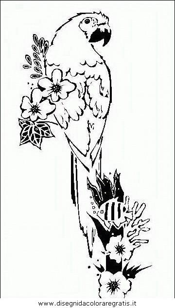animali/pappagalli/pappagallo08.JPG
