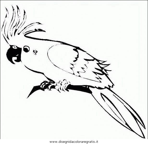 Disegno pappagallo09 animali da colorare for Disegno vaso da colorare