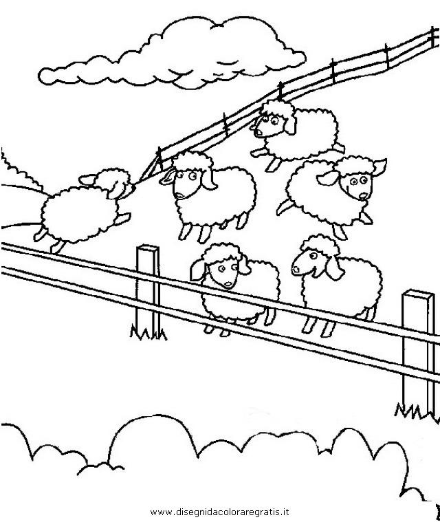 animali/pecore/ovile_2.JPG