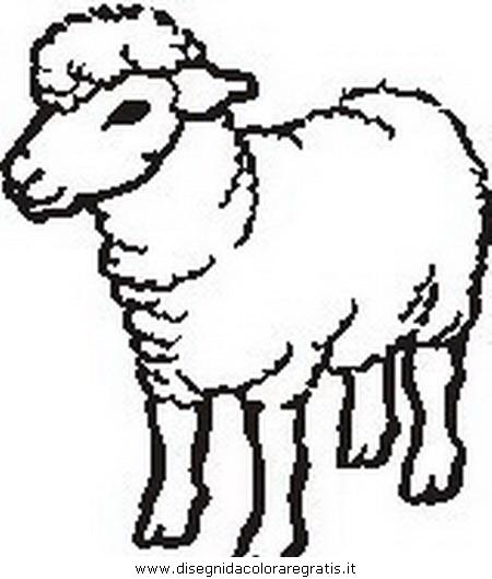 animali/pecore/pecora_0.JPG