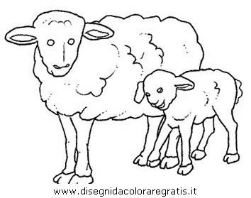 animali/pecore/pecora_3.JPG