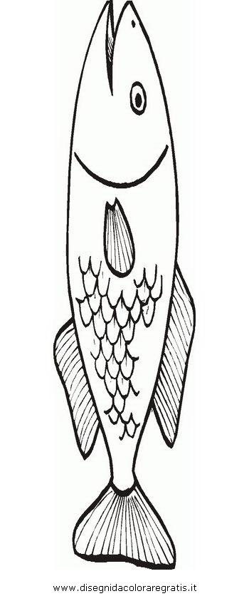 animali/pesci2/acciuga_2.JPG