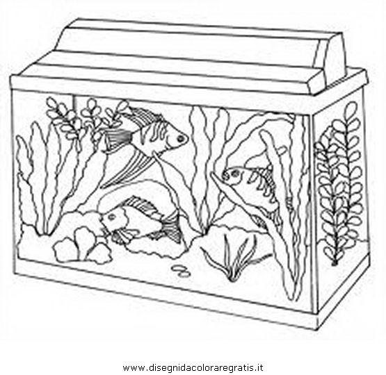 animali/pesci2/aquarium_acquario_01.JPG