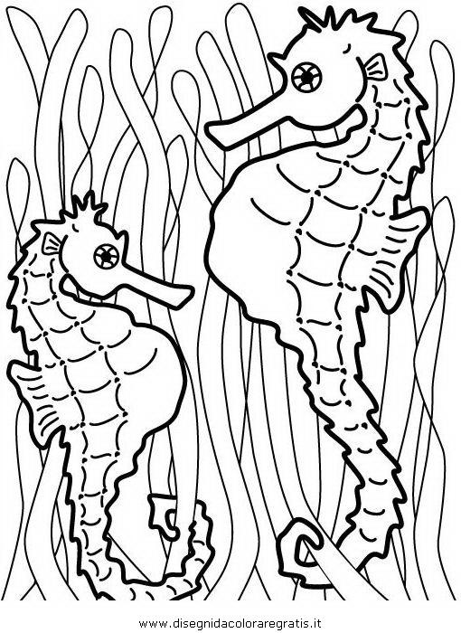 animali/pesci2/ippocampo.JPG