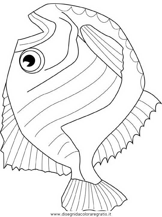 animali/pesci2/pesce_pesci_020.JPG