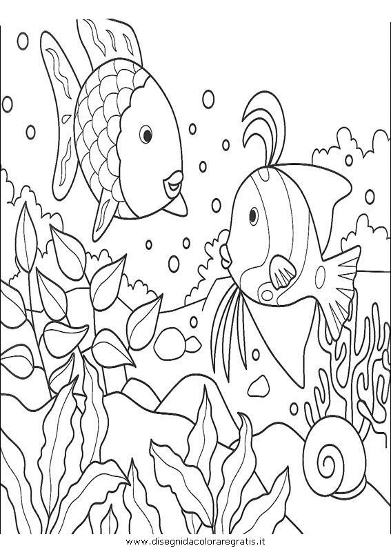 animali/pesci2/pesce_pesci_023.JPG