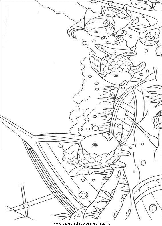 animali/pesci2/pesce_pesci_030.JPG