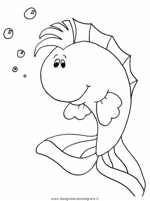 animali/pesci2/pesce_pesci_044.JPG