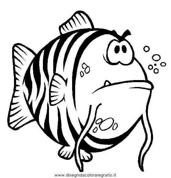 animali/pesci2/pesce_pesci_064.JPG