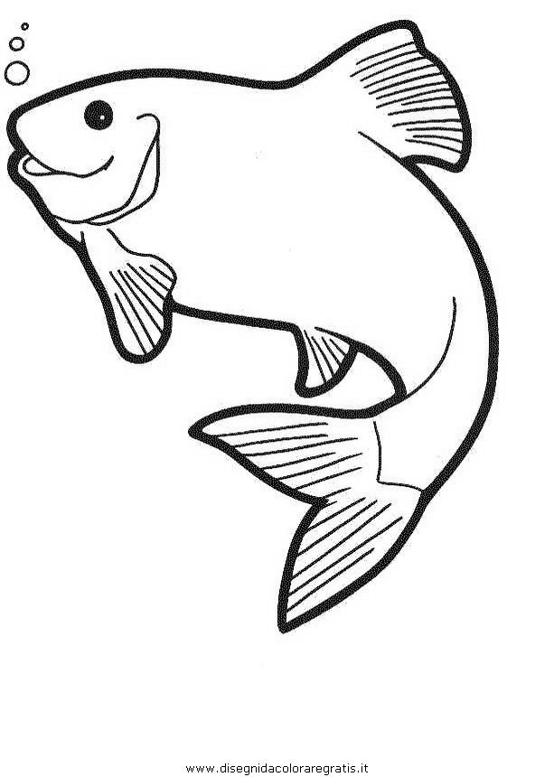 animali/pesci2/pesce_pesci_065.JPG
