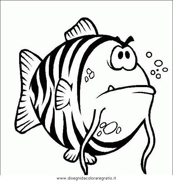 animali/pesci2/pesce_pesci_086.JPG