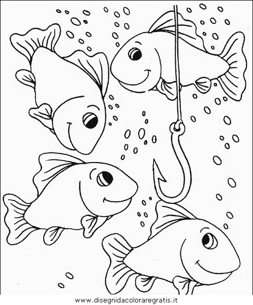 animali/pesci2/pesce_pesci_087.JPG