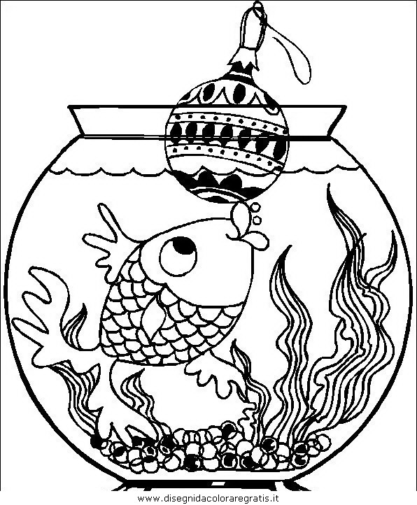 animali/pesci2/pesce_pesci_097.JPG