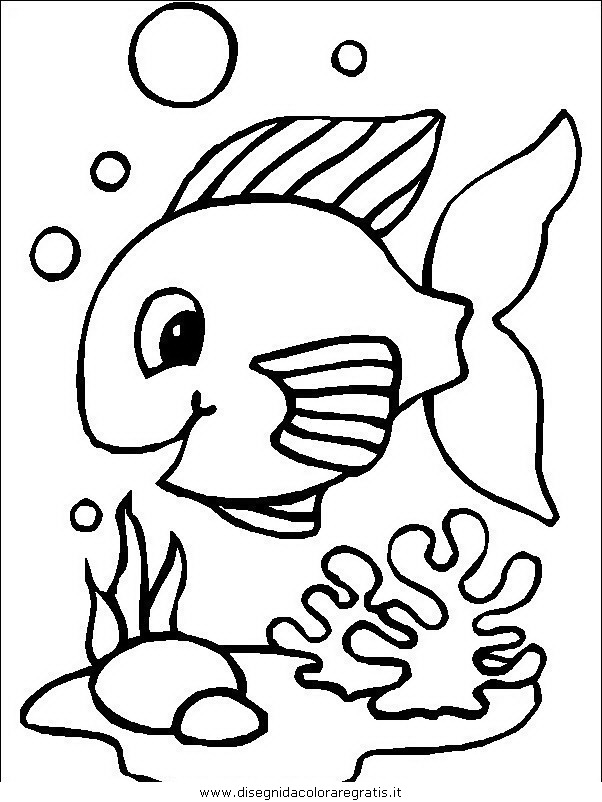 animali/pesci2/pesce_pesci_098.JPG