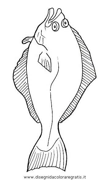 animali/pesci2/pesce_pesci_102.JPG