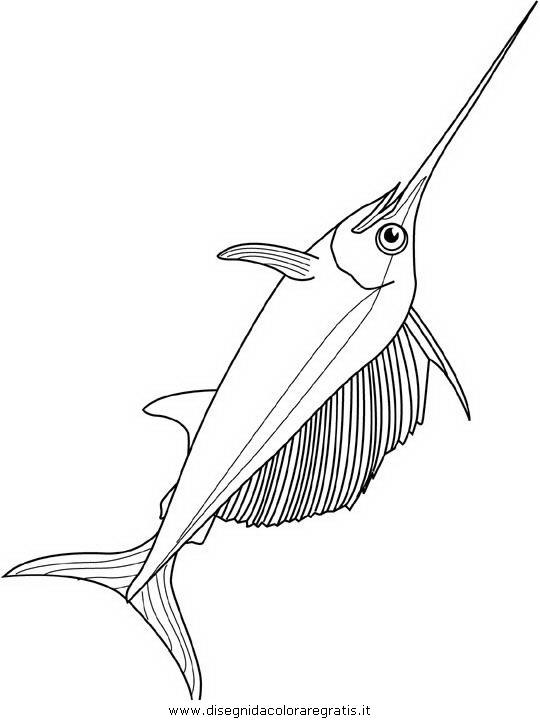 Disegno pesce pesci 145 animali da colorare for Trota da colorare
