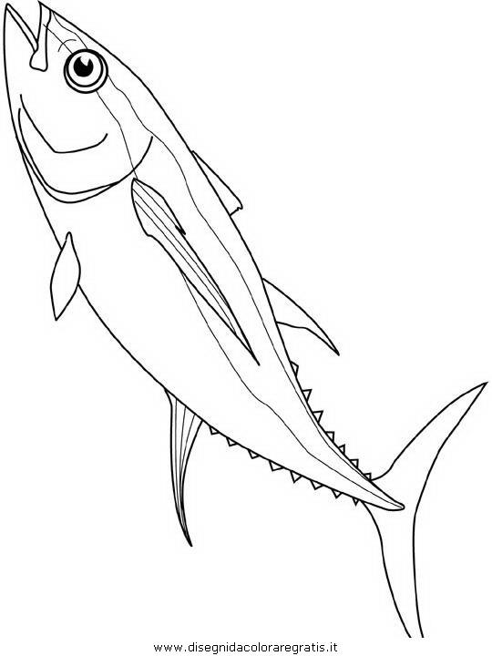 Disegno pesce pesci 148 animali da colorare for Disegni marini da colorare