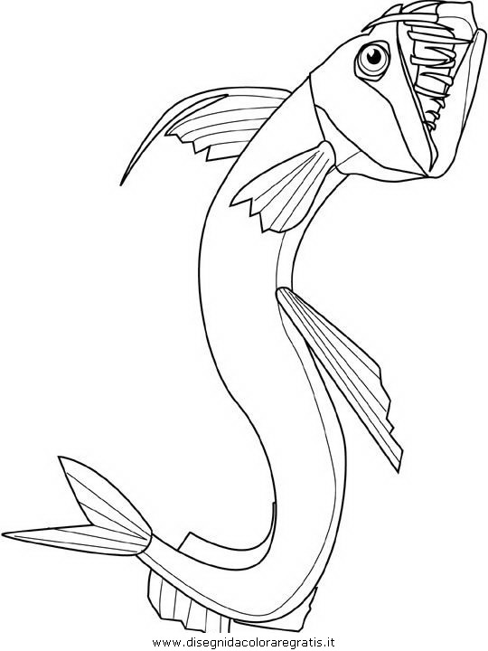 animali/pesci2/pesce_pesci_149.JPG